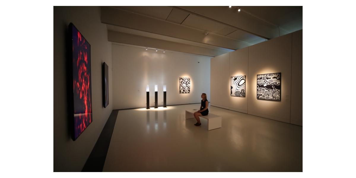 Vue de l'exposition « Pixels Noir Lumière 2019 - Miguel Chevalier », Musée Soulages, Rodez - Commissaire : Christophe Hazemann - Photo Nicolas Gaudelet